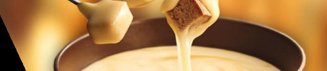 fondue replacement parts online